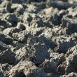 Cultivated soil background — Stock Photo