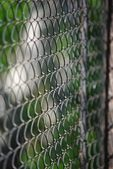 Chain link rusty fence — Stock Photo