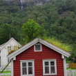 Little red house with grass roof — Stock Photo #3692491