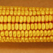 Maize corn - Stock Photo