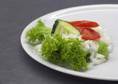 Lunch Vegetable Salad — Foto de Stock