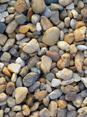 Rocks on beach — Stock Photo