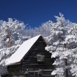 Stock Photo: Mountain house in snow