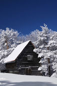 Mountain house in snow — Stock Photo