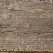 Old wood wall — Stock Photo #3527271