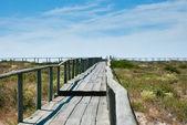 Boardwalk kum tepeleri üzerinde — Stok fotoğraf