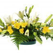 Yellow daisy and white flowers arrangement — Stock Photo #3898028