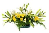 Yellow daisy and white flowers arrangement — Stock Photo
