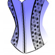 Stock Photo: Corset4