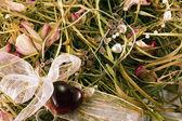 Jewelry on hay — Stock Photo