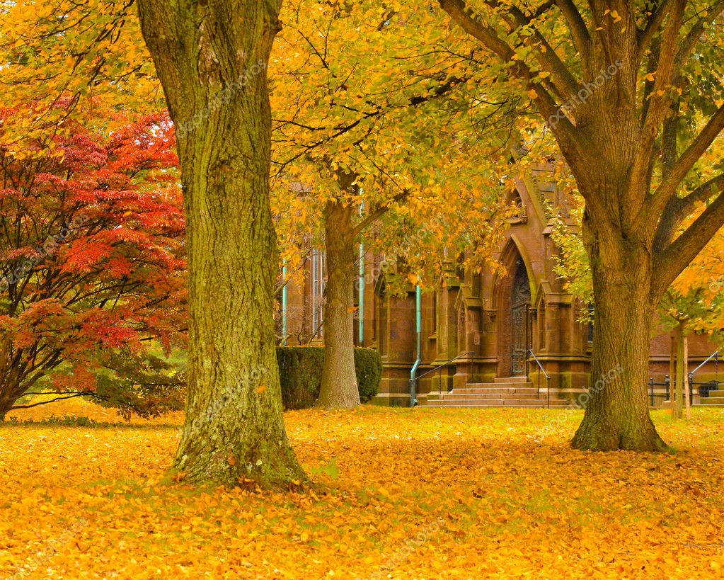 Gorgeous autumn foliage surrounding a gothic cathedral.  — Stock Photo #2874588