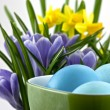 Stock Photo: Easter eggs in cup with crocuses