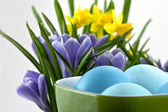 Easter eggs in cup with crocuses — Stock Photo