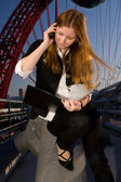 The young attractive businesswoman — Stock Photo