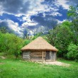 Stock Photo: Cabin of poor peasant