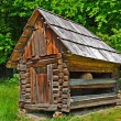 Cabin of poor peasant — Stock Photo #2861344