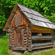 Cabin of poor peasant — Stock Photo