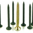 Black and brass angled screws - Foto de Stock