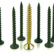 Stock Photo: Black and brass angled screws