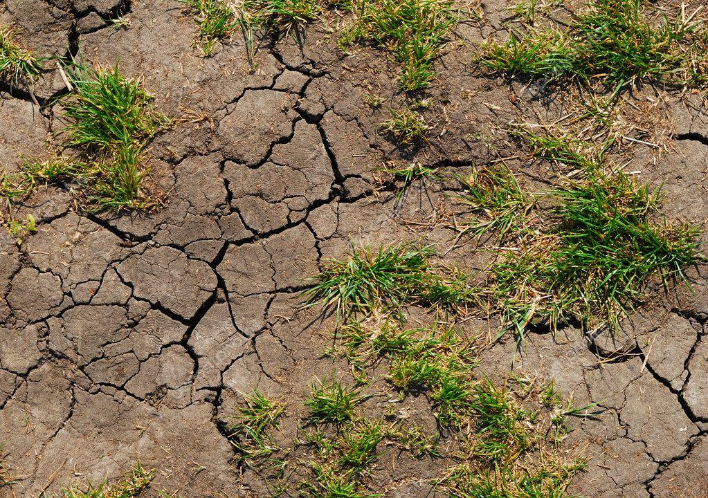 Erosi Tanah