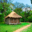Cabin of poor peasant — Stock Photo #2886609