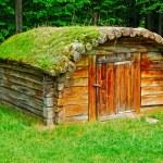 Cabin of poor peasant — Stock Photo