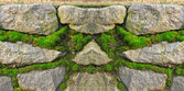 Stone wall, becoming over green moss — Stock Photo