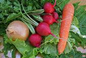 Palatable vegetables — Stock Photo