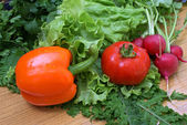 Appetizing vegetables — Stock Photo