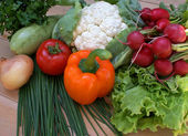 Spring vegetables — Stock Photo