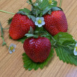 Ripe strawberries — Photo