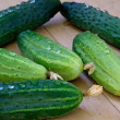 Stock Photo: Green young cucumber