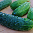 Stock Photo: Appetizing green young cucumber