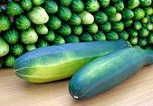 Oblong marrow and green cucumbe — Stock Photo