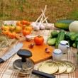Preservation appetizing summer vegetables — Stock Photo
