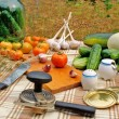Preservation appetizing summer vegetables — Stock Photo #3568221