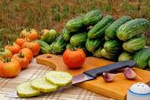 开胃菜 — 图库照片