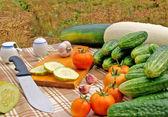 Appetizing vegetable snack — Stock Photo