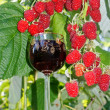 Fortified raspberry wine — Stock Photo #3573533