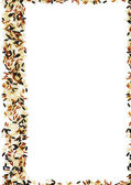 Wild Rice frame with a white background — Stock Photo