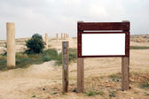 Blank wooden Signpost in the desert — Stock Photo