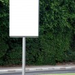 White blank Street Sign — Stock Photo