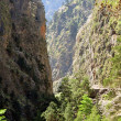 Samaria gorge. National Park of Samaria. — Stock Photo