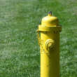 Prevention: yellow fire hydrant — Stock Photo