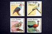 Birds stamps — Stock Photo