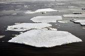 Ice blocks in river — Stock Photo