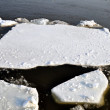 Ice blocks in river — Foto Stock