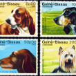 Collection of dog stamps. — Stock fotografie
