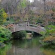 Royalty-Free Stock Photo: Japanese garden bridge