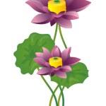 Lotus — Stock Photo #2947642